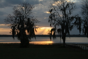 one sunset