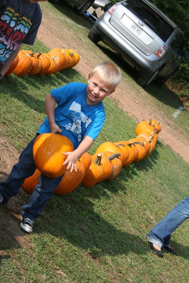 Mr Hunter picking his pumpkin