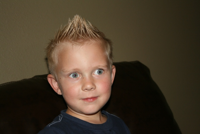 the Mitchell Mohawk