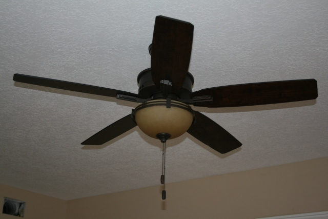 fan in the den