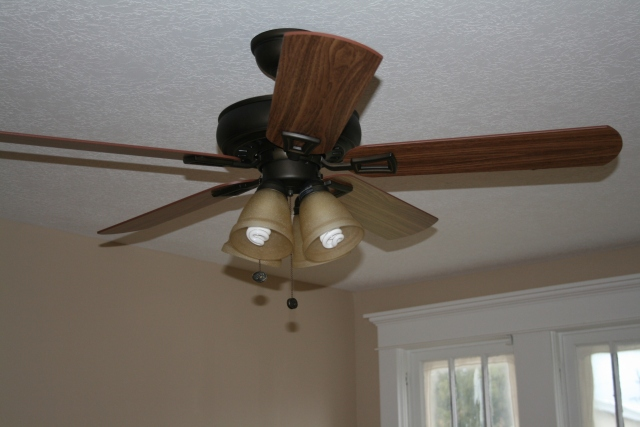 one of the fan