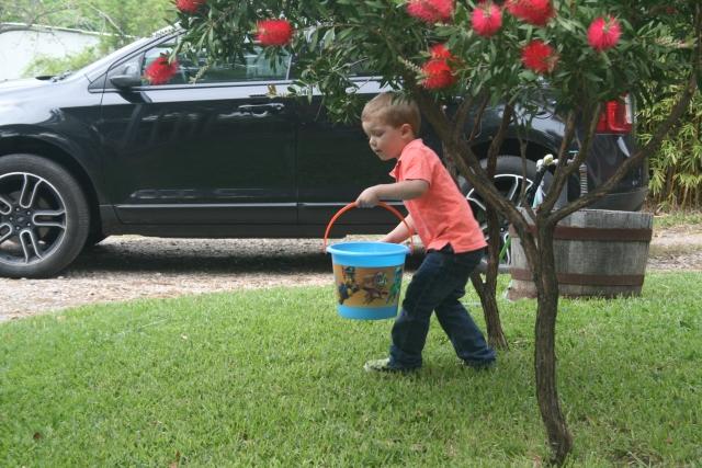 Wyatt is on the hunt
